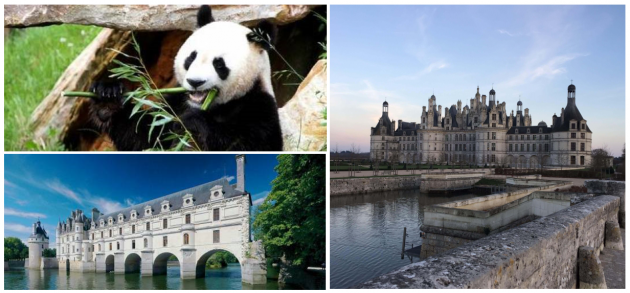 Chambord + Chenonceau + Beauval