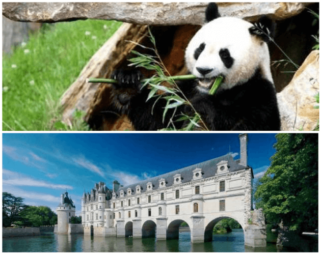 pass château Chenonceau + Zoo Beauval